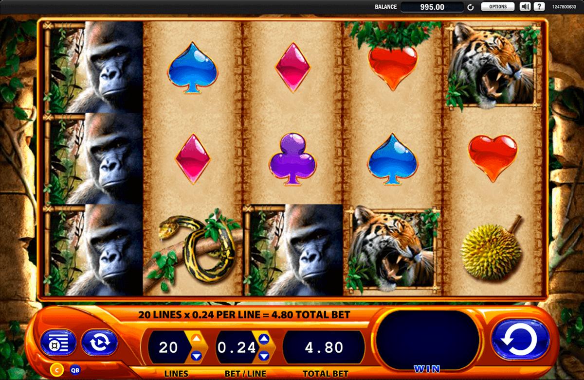 extra casino avis